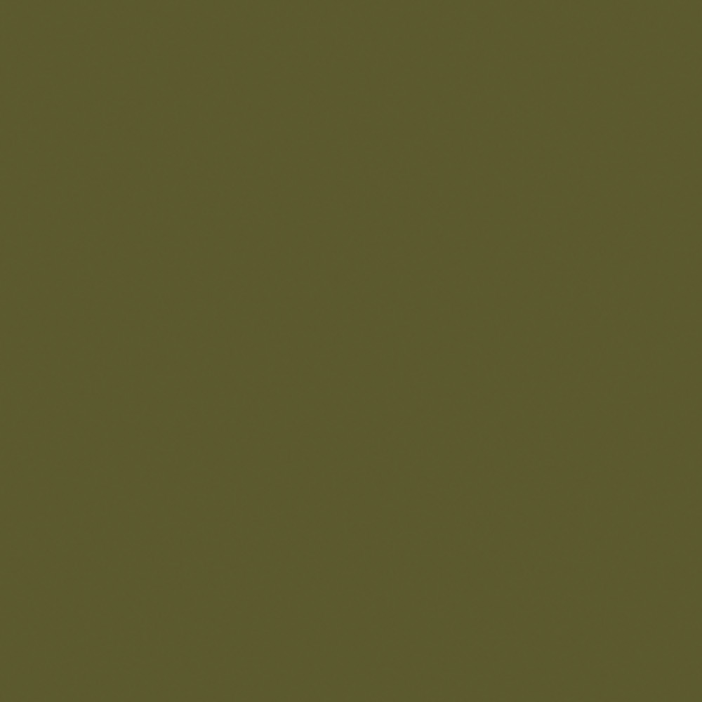 Olive Green <br/>(matt and gloss)